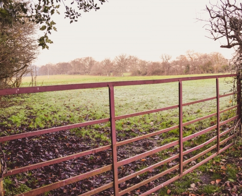 photo of a gate at the entrance to a field